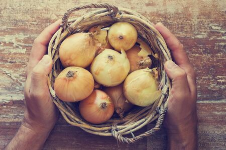 ripe: Hands of men holding a basket with ripe onions. View from above. Organic vegetables. Bio healthy food. Toned image Stock Photo