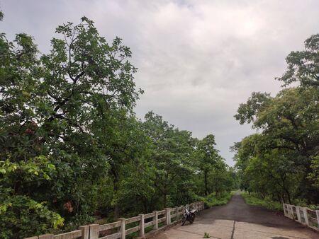 Countryside Bridge On Road In Monsoon Season