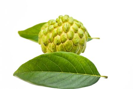 Sugar apple or custard apple with green leaf isolated on white background