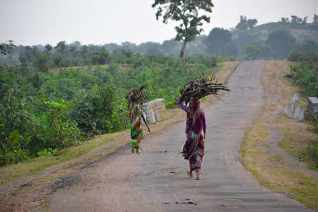 indian women carrying wood branchs on their heads. Indian girl carrying wood on head at the road, An Indian rural scene.