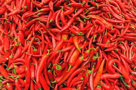 chilli red: chile rojo en el mercado