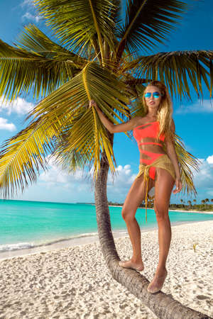 Beautiful tanned woman in colorful bikini and sunglasses is posing on the Caribbean beach near the palms. Bikini fashion. Travel. Summertime. Hot bikini model. Saona island. Imagens