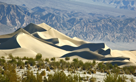parched: Mesquite Flat Sand Dunes in death valley Stock Photo