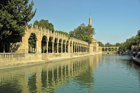 Harran lake of fish