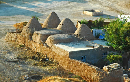 abraham: Harran Beehive homes