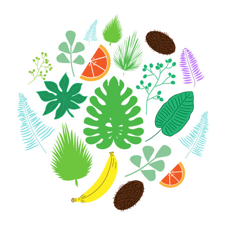 Set of tropical leaves and fruits icons in circle