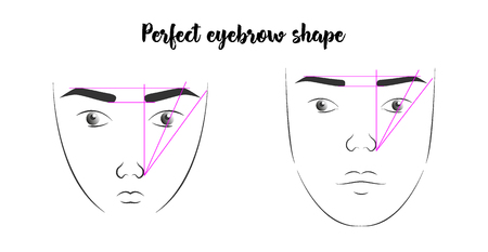 a poster with the faces of women with the correct form of eyebrows. a diagram showing the perfect shape of eyebrows Banque d'images