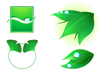 leaves vector: Nature elements for eco (green) cosmetics decoration
