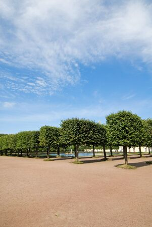 peterhof: View to The Square Fountain behind decorated trees at The Upper Garden, Peterhof Stock Photo