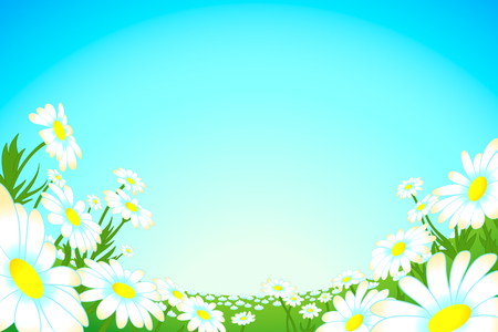 under view: Summer meadow of blooming camomiles under wide-angle view Illustration