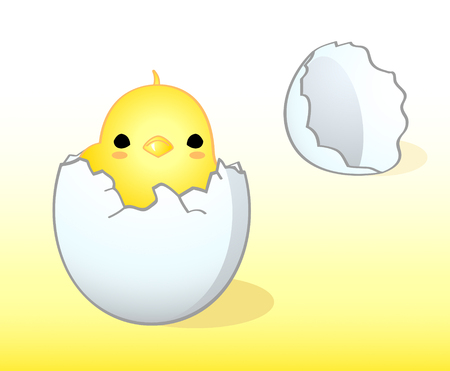 Newborn cute Easter chicken in the egg shell