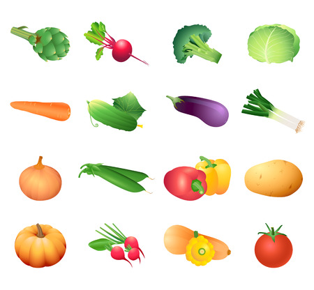 pumpkin tomato: Set of colorful isolated vegetables for calorie table illustration