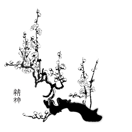 Sakura painting in chinese black and white watercolor style Vector