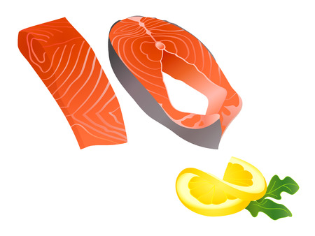 salmon fish: Raw salmon slices with lemon slice and spicy herb Illustration