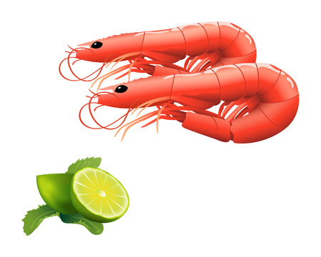cooked meat: Fresh shrimps served with lime and mint isolated over white