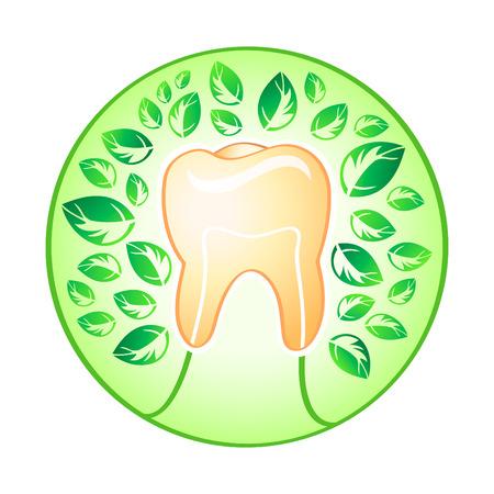 dentista: Diente sano �rbol cubierto por hojas frescas concepto ilustraci�n