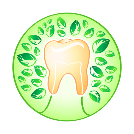white teeth: Healthy tooth tree covered by fresh leaves concept illustration