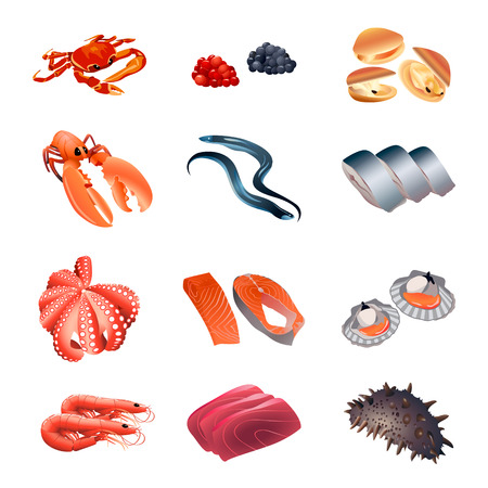 calorie: Set of colorful isolated fish and seafood for calorie table illustration