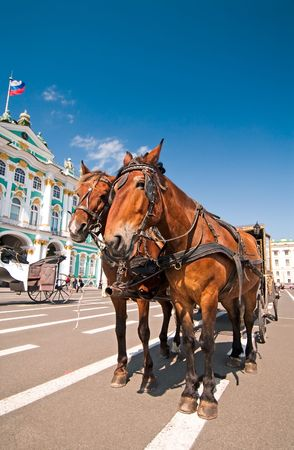 Horses with carriage waiting for the tourists in front of Hermitage Museum, St.Petersburg, Russia Stock Photo - 5872679