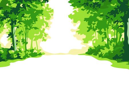 paths: Green summer forest background