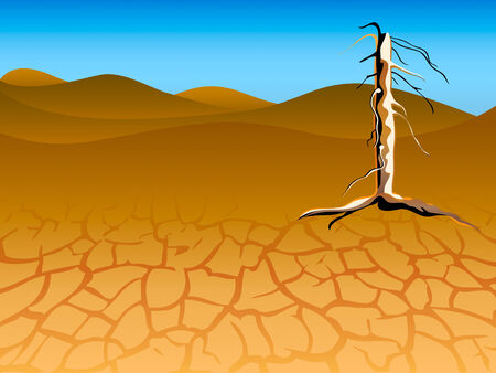 waterless: Drought landscape with dead tree