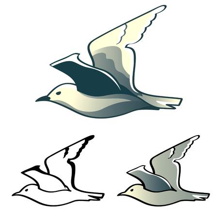 albatross: Flying albatross (or seagull) designs isolated