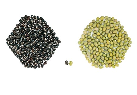 munggo: Two type of asian mung beans (mash) for yoga meal