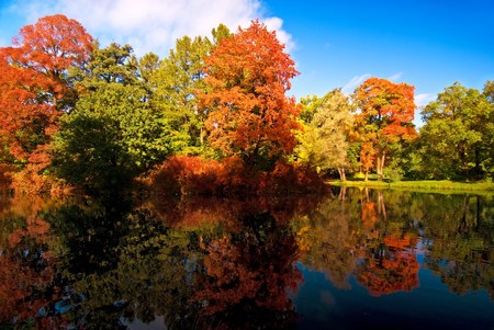 Colorful autumn trees reflected at the small pond