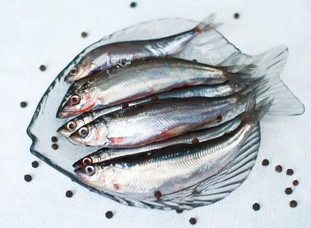 spawning: Raras pescado fresco de baltic de ruso-finland�s vendace (Coregonus albula) en la placa  Foto de archivo