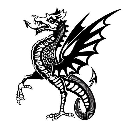 Vintage medieval dragon drawing