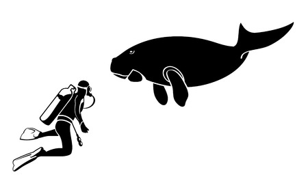 Scuba diver and dugong contour silhouettes isolated