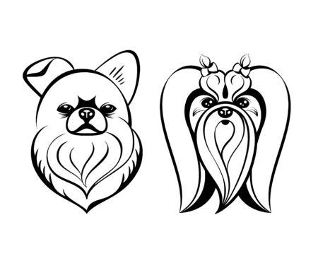 maltese dog: Maltese dog heads contour drawing isolated Illustration