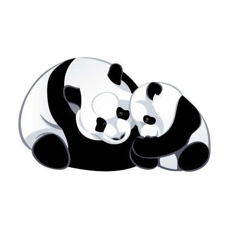 two parent family: Cute baby and mommy panda isolated