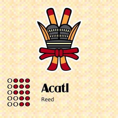 Aztec calendar symbols - Acatl or reed  13  Vector
