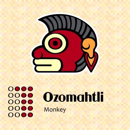 Aztec calendar symbols - Ozomahtli or monkey  11  Vector