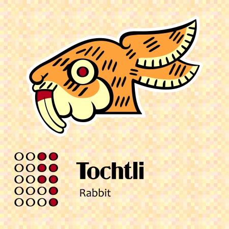 Aztec calendar symbols - Tochtli or rabbit  8  Vector