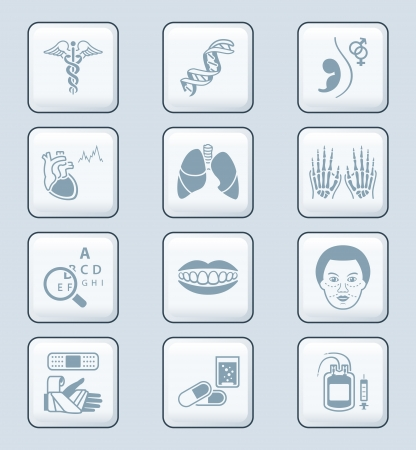 Medical symbols, specialties, human organs and health-care objects Stock Vector - 18366308