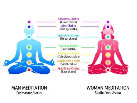 chakras: Posici�n de meditaci�n para el hombre y la mujer con el diagrama chakras Vectores