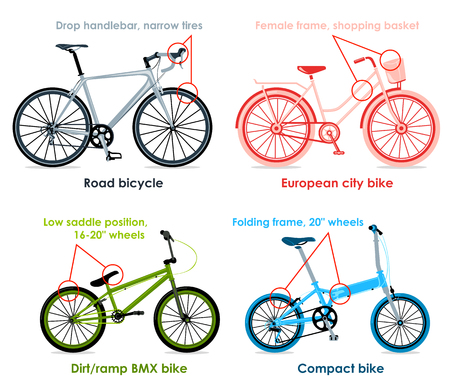 Modern road bicycle, urban, folding and BMX bikes infographics Vector