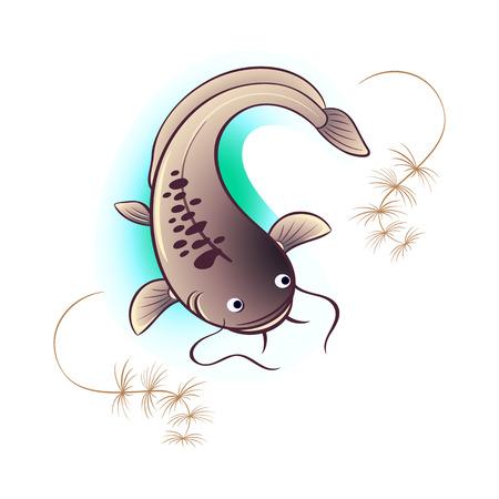 Big river catfish and algae isolated Illustration