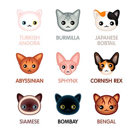bobtail: Kawaii cat breed head icons