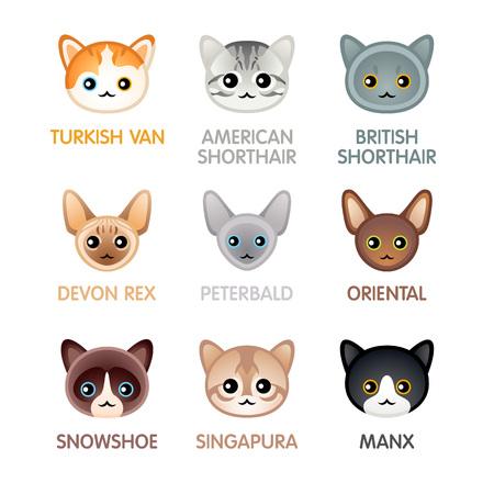 Kawaii cat breed head icons
