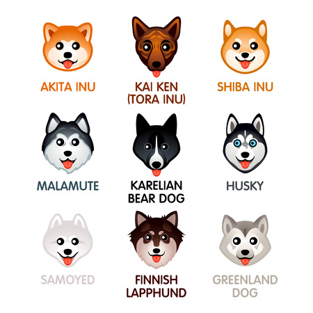 Cute colorful dog breed head icons