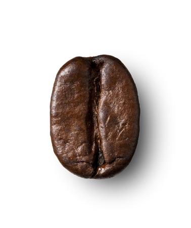 semilla de cafe: Granos de café