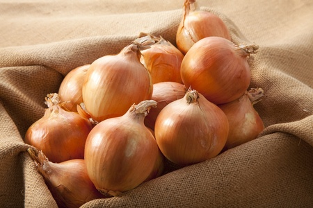 Harvested onions Stock Photo