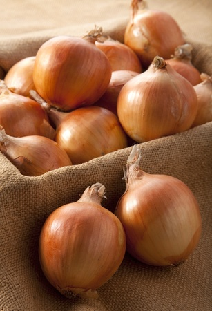 Harvested onions Stock fotó
