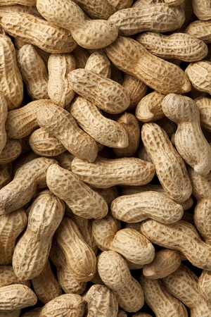 Close-up of some peanuts. background Stock fotó