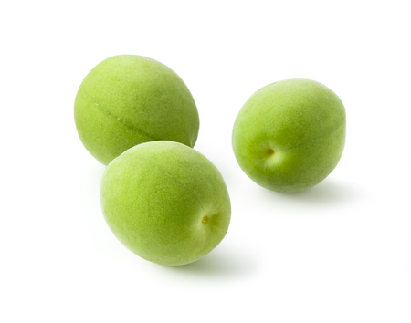 An image of Fruit of plum 写真素材