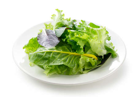 Various salad leaves on a plate on a white background