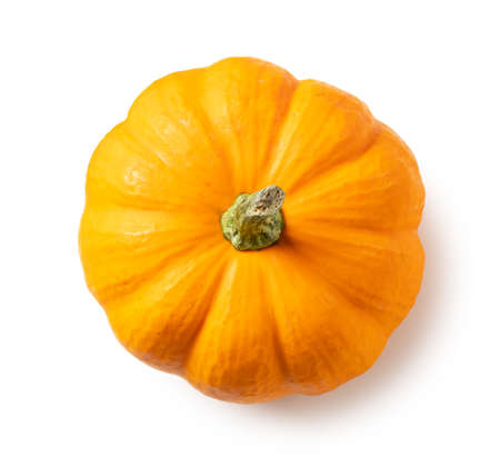 Orange pumpkin on a white background